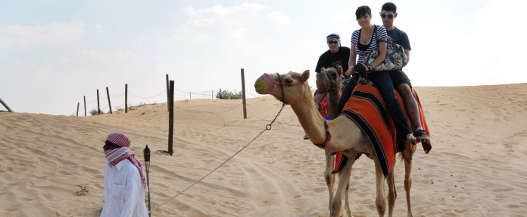 ride on top of a Camel