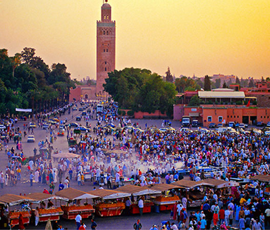 morocco-student-travel