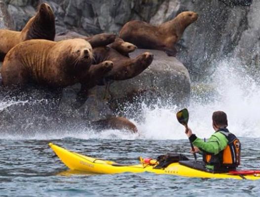Kayaking in Kamchatka, Russia