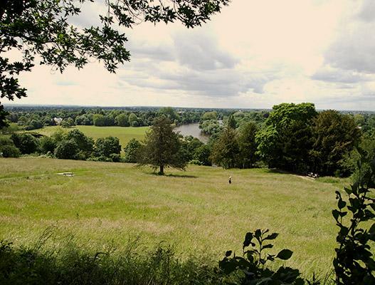 study abroad students always enjoy Richmond Park