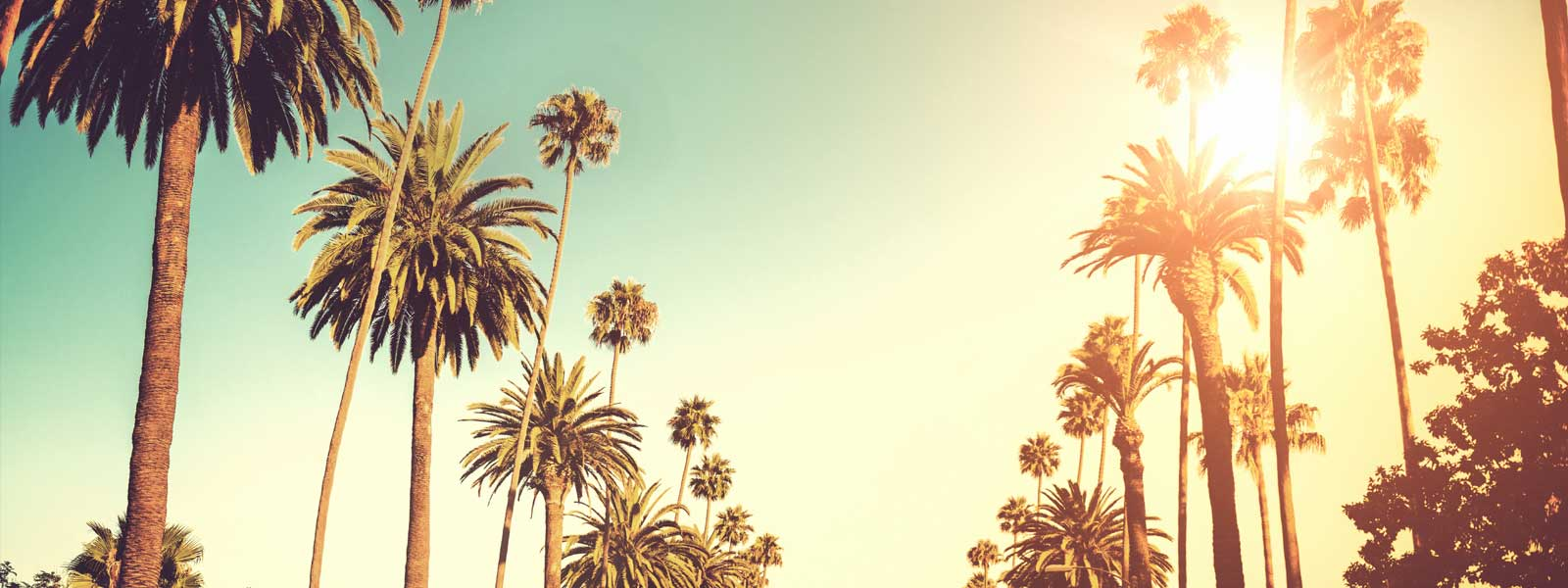 Cheap Hotels in Los Angeles | StudentUniverse